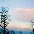 Winter Sunset by Rebecca Madden