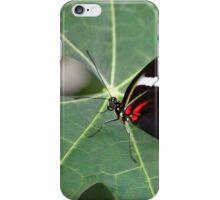 Wings of the Tropics iPhone Case/Skin