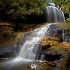 Lyrebird Glen Falls. by Andrew Bosman