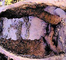Sand ans root by Juliana Warne