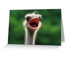 Say 'Aaaahhhh' Greeting Card