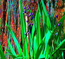 Psychedelic RainForest Series #2 - Yarra Ranges National Park, VIctoria Australia by Philip Johnson