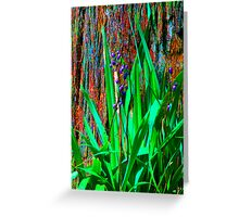 Psychedelic RainForest Series #2 - Yarra Ranges National Park, VIctoria Australia Greeting Card