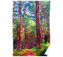 Psychedelic RainForest Series #3 - Yarra Ranges National Park , Marysville Victoria Australia Poster