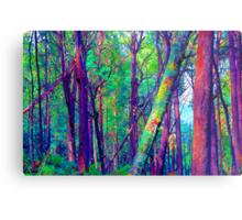 Psychedelic RainForest Series #5 - Yarra Ranges National Park , Marysville Victoria Australia Metal Print