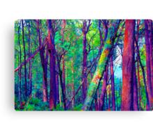 Psychedelic RainForest Series #5 - Yarra Ranges National Park , Marysville Victoria Australia Canvas Print