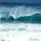 Surf Break Gracetown WA by pedroski