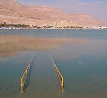 Beware of Dead sea by Efi Keren