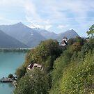 Brienz lake by Efi Keren