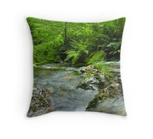 Bassenthwaite Bound - Downstream Throw Pillow