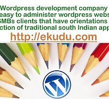 Manage Your Interfaces and Brand Through Lively Wordpress Development Services by jerrycollins
