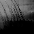 NESTING CRANES No.4 by Paul Quixote Alleyne