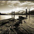 Lake Kootenay Mono by Robert Mullner