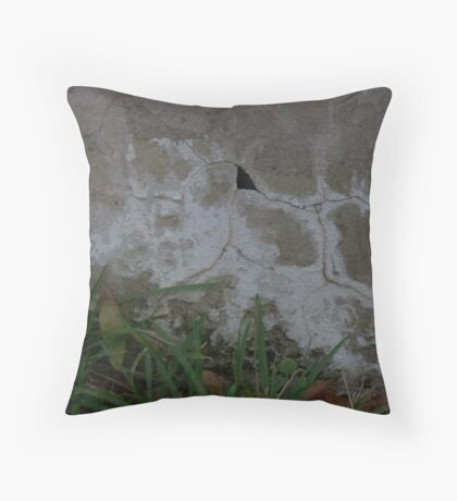 Crack Abstract Throw Pillow