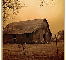 just barns by budrfli