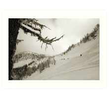 WhiteWater Avalanche fields Art Print