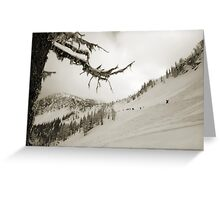 WhiteWater Avalanche fields Greeting Card