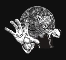 Meow Kune Do by ZugArt