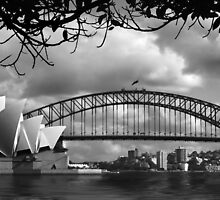 Two Icons - Sydney Harbour Bridge by Hans Kawitzki