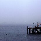 pier by brookworm
