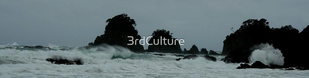 Whananaki by 3rdCulture