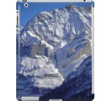 Grindewald Winter Scene iPad Case/Skin