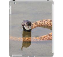 Shield Nose Snake - Dangerous Beauty iPad Case/Skin