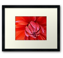 I see Red Framed Print