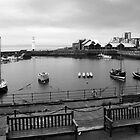 Newhaven Harbour by cynthiab