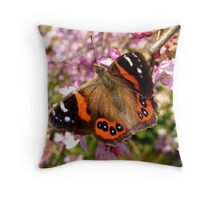 I've Been Dusted With Gold.. Red Admiral Butterfly - NZ Throw Pillow