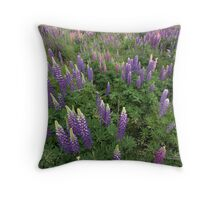 all around Throw Pillow