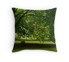 The Protected Bench Throw Pillow