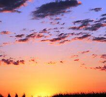 ~~Solemness Sunrise~~ part1 by UniquelyMe0711