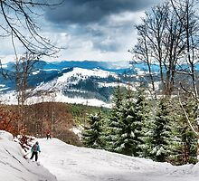 Carpathian mountains by Serhii Simonov