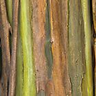 Green Bark 3 by Werner Padarin
