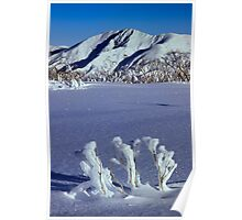 Mt Feathertop Poster