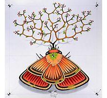 tree - moth (original sold) Photographic Print