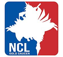 Gold Saucer's NCL!! - National Chocobo League Photographic Print