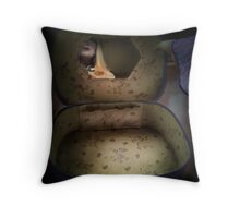 Vanity Case Throw Pillow