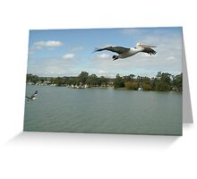 Pelican over Mannum Greeting Card