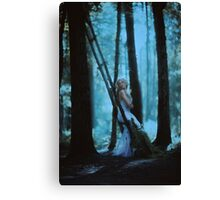 forest lights Canvas Print