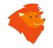 Funny smiling head of a cartoon lion  Photographic Print