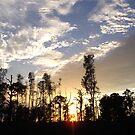 Sunset 002 by Cardet