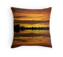 Praise the day Throw Pillow
