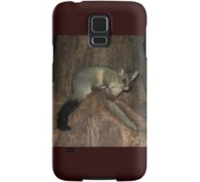 Possum In Tree, Hyde Park, Sydney, Australia 2005 Samsung Galaxy Case/Skin