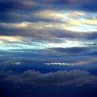 Lonely flight by brianboyce50