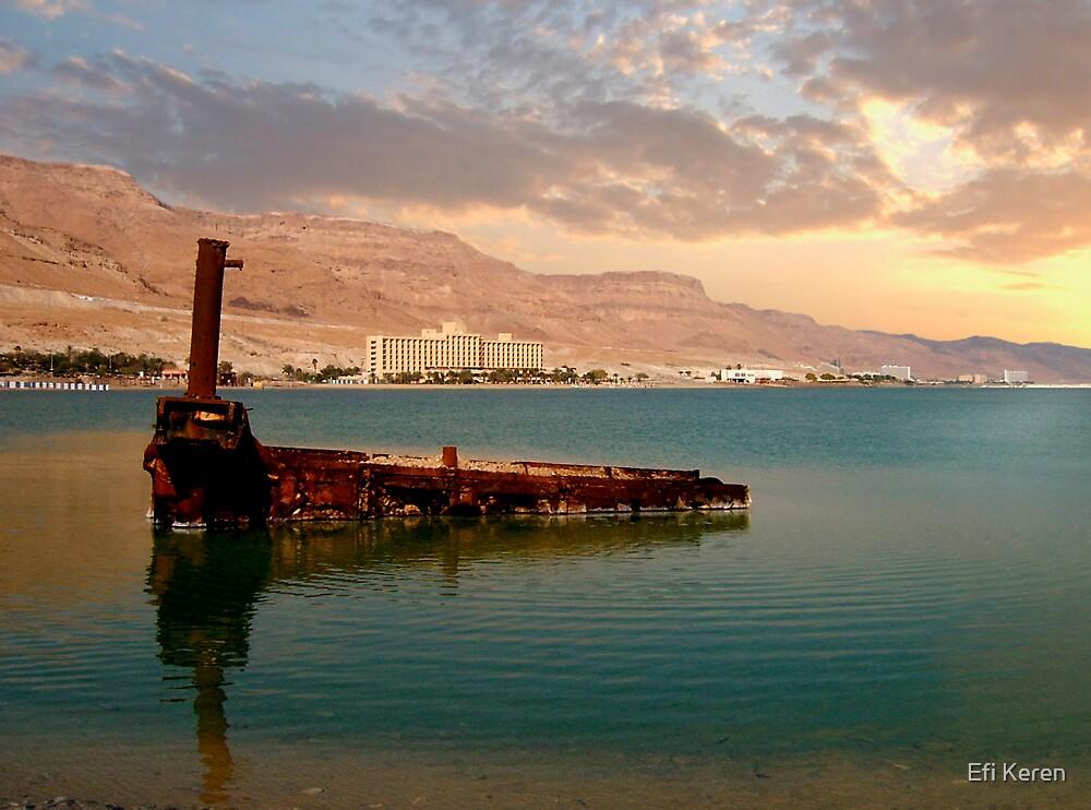 Dead sea power by Efi Keren