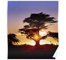 Monterey Sunset Poster