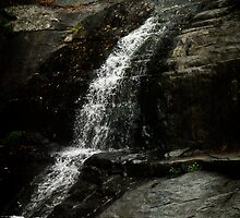 CEDAR CREEK WATERFALL by BYRON