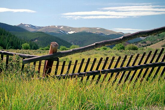 Colorado Caged by Jan Cartwright